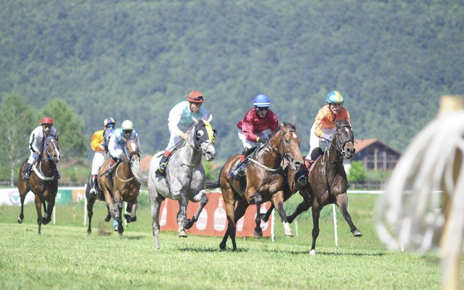 Konjičke trke